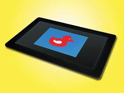 Bild: Bild-Ausschnittsverkleinerung für LiteScout-Pro mit eingelegter fluoreszierender Ente.